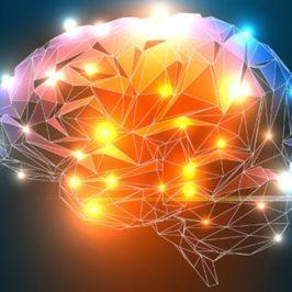 Lavoro sulle credenze, nuovi percorsi neuronali